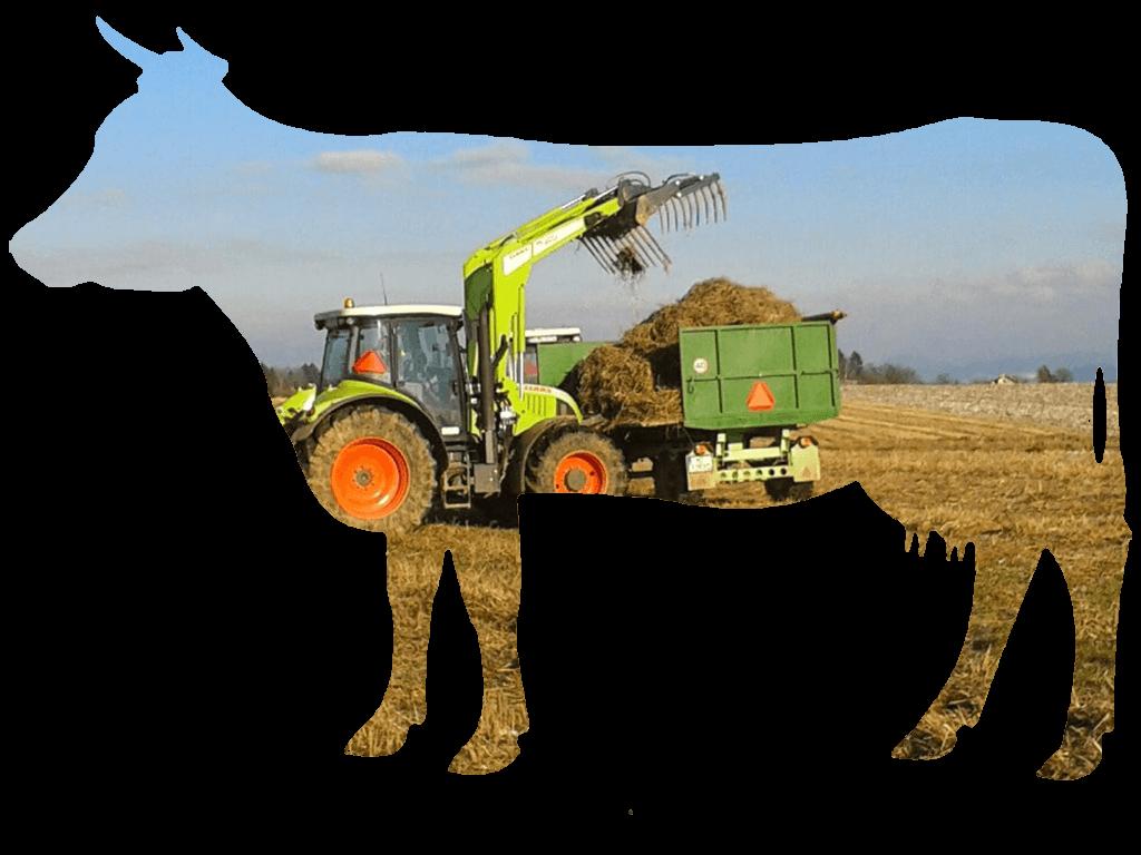 Poľnohospodárska prvovýroba